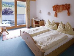 Pets-friendly hotels in Fieberbrunn