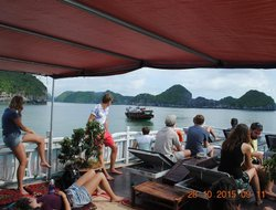 Pets-friendly hotels in Cat Ba Island