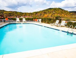 Pets-friendly hotels in Helen