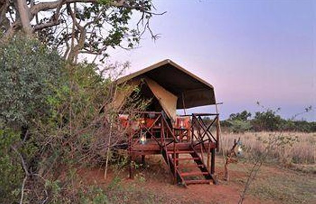 фото Kwafubesi Tented Camp 790503650
