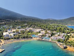 Pets-friendly hotels in Torba