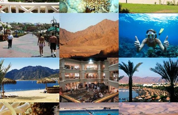 фото Sharm Holiday Lettings Apartment 798774674