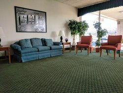 Pets-friendly hotels in Elyria