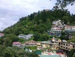 Pets-friendly hotels in Mussoorie