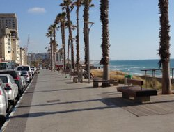 Bat Yam hotels with Russian personnel