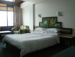 Top-10 hotels in the center of Gangtok