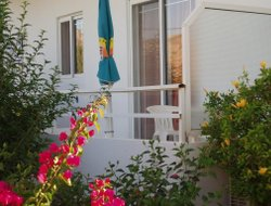 Pets-friendly hotels in Tilos Island