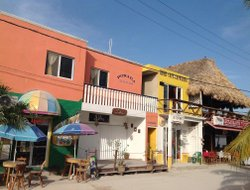 Pets-friendly hotels in Holbox