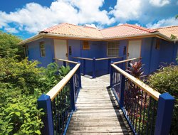 Pets-friendly hotels in Grenada