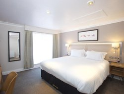Pets-friendly hotels in Tiverton
