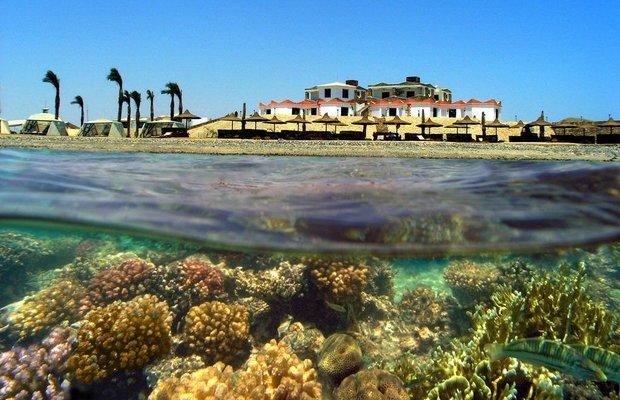 фото Coral Garden Resort 809166699