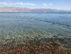 Top-10 hotels in the center of Eilat