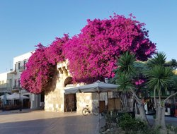 Top-10 hotels in the center of Kos