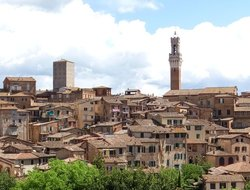 Business hotels in Siena