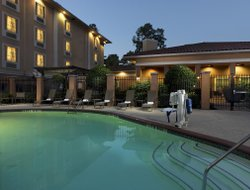 Pets-friendly hotels in Aldine