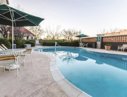 Pets-friendly hotels in Grand Junction