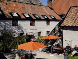 Pets-friendly hotels in Visby