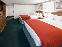 Pets-friendly hotels in Kennewick