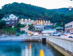 Pets-friendly hotels in Tongyoung