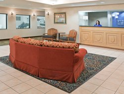 Pets-friendly hotels in Alliance