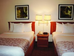 Pets-friendly hotels in Augusta