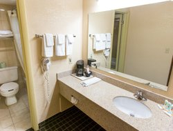 Pets-friendly hotels in Big Rapids
