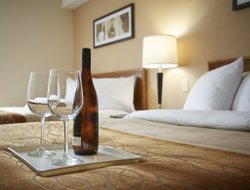 Pets-friendly hotels in Brossard