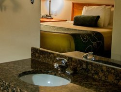 Pets-friendly hotels in Cheektowaga
