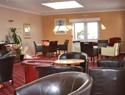 Pets-friendly hotels in Chichester