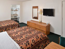 Pets-friendly hotels in Clute