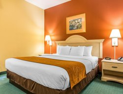 Pets-friendly hotels in Conway