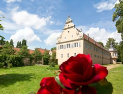 The most popular Darmstadt hotels
