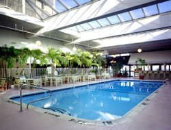 Pets-friendly hotels in Ocean City