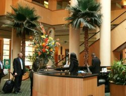 Business hotels in Bay Hill