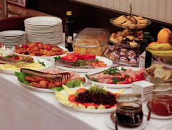 Pitesti hotels with restaurants