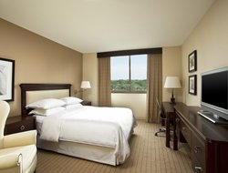 Business hotels in Clayton