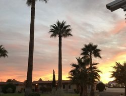 Pets-friendly hotels in Twentynine Palms