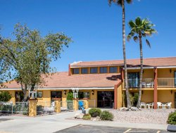 Pets-friendly hotels in Wickenburg