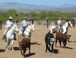 Wickenburg hotels with restaurants