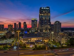 Pets-friendly hotels in Houston