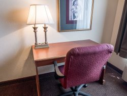 Pets-friendly hotels in Bossier City