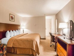 Business hotels in Red Deer