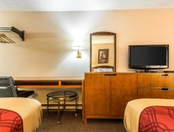 Pets-friendly hotels in Decatur