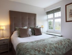 Pets-friendly hotels in Chagford