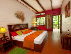 Pets-friendly hotels in Tortuguero