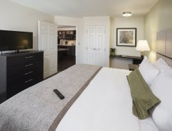 Pets-friendly hotels in Arlington