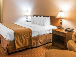 Pets-friendly hotels in St Ignace