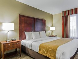 Business hotels in Sumter