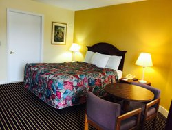 Pets-friendly hotels in Old Saybrook