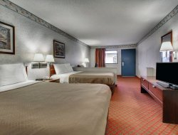 Pets-friendly hotels in Laurel